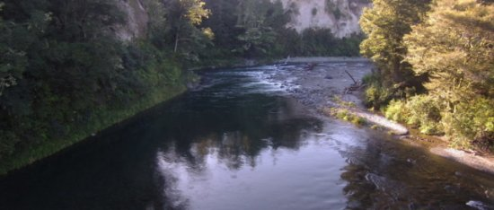 Turangi, Neuseeland: Tongariro River Prints for sale