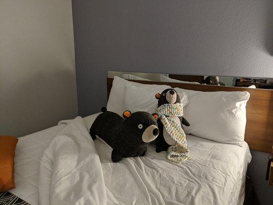 Microtel Inn Suites By Wyndham Niagara Falls Ny Omd Men Och Prisj Mf Relse Tripadvisor