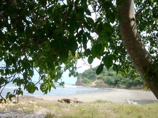 Al Vaiven de las Olas: Mar playa y sazón