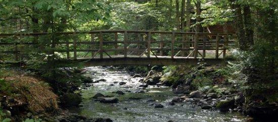 Lisbon, New Hampshire: Foot bridge over Salmon Hole Brook