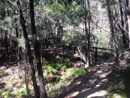 Sunshine Coast, Australia: Enjoying the scenery