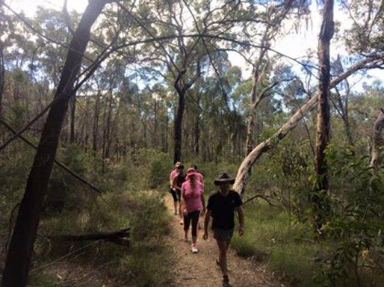 Саншайн-Коуст, Австралия: A truly enjoyable day!