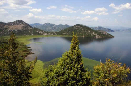 Day tour to Skadar Lake from Kotor...