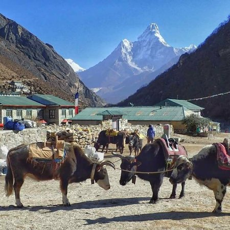 Katmandun laakso, Nepal: Everest Region,Nepal