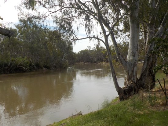 Tooleybuc, Αυστραλία: Murray River from Lions Park