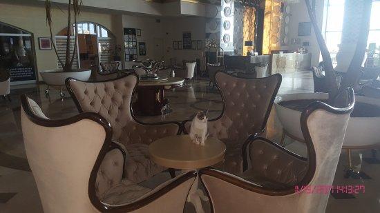 Terrasse  Terrasse - Side La Grande Resort & Spa, Manavgat Resmi - TripAdvisor