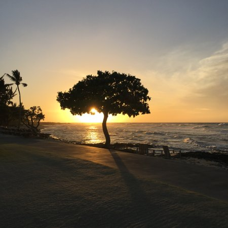 Beach Tree Bar and Lounge: lovely sunset!