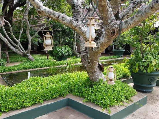 Sigiriya Village Hotel: 20171202_101242_large.jpg