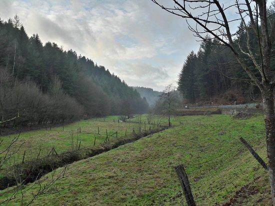 Klugsche Mühle: 20171216_150807_large.jpg