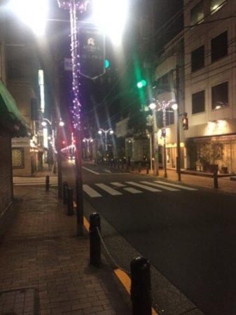 Rikkyodori Shopping Street