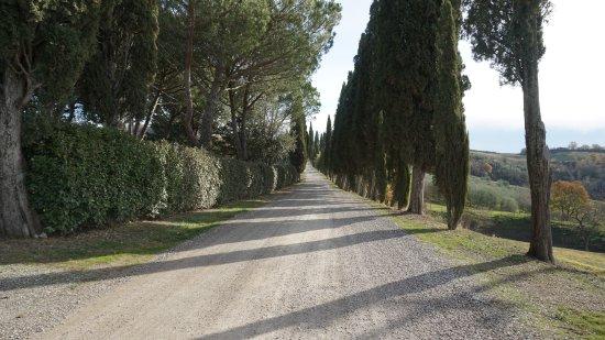La strada per arrivare a Villa Armena