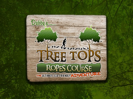 Sevierville, TN: Tree Tops Ropes Course