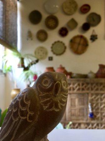 Horjin Eco Gallery