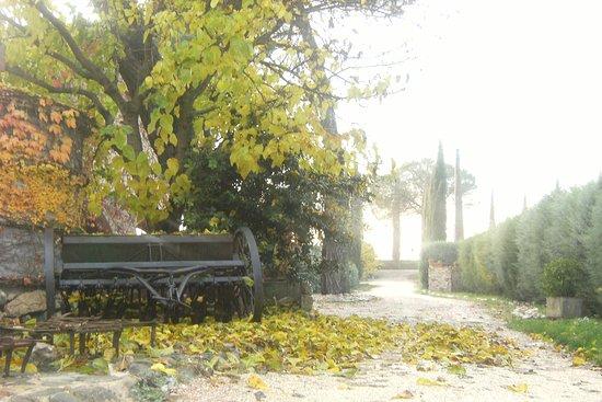 Castello delle Forme, İtalya: Autumn!