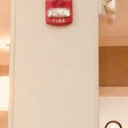 Hilton Garden Inn Champaign/ Urbana: 6 AM Fire Alarm Emptied Hotel Into  Freezing Parking