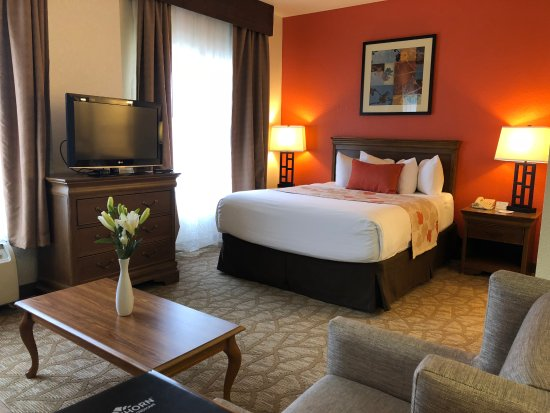 hawthorn suites by wyndham decatur updated 2018 hotel