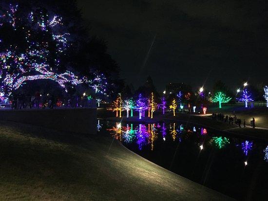 Vitruvian Park: vitruvian lights