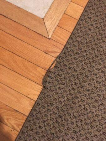 old tattered carpet picture of residences at biltmore asheville