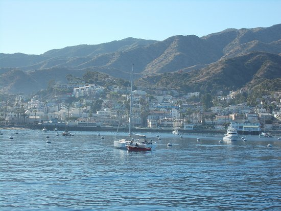 Catalina Island Chamber of Commerce & Visitors Bureau: Approaching Avalon