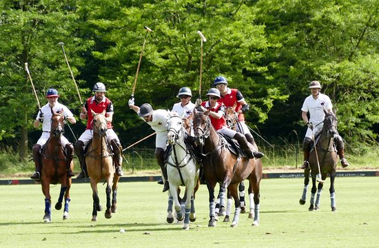 ‪Copenhagen Polo Club‬
