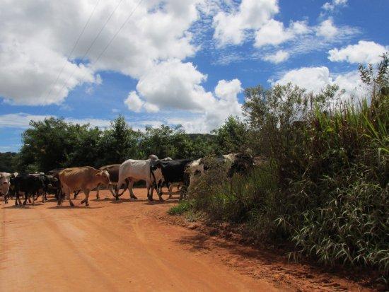 Bueno Brandao: Zona rural