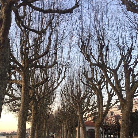 Ibis Coimbra: photo0.jpg