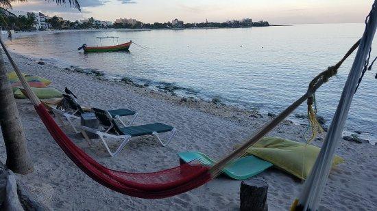 La Buena Vida Restaurant: Hammock and chairs at the beach