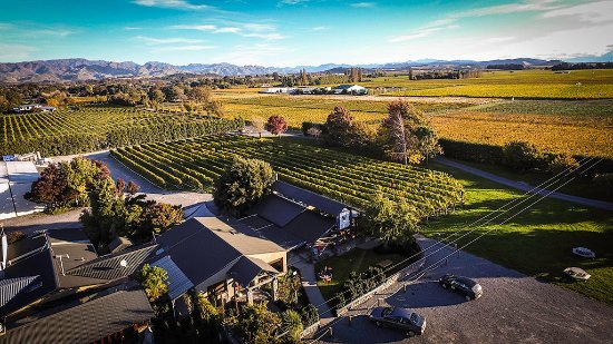 Renwick, Nya Zeeland: Forrest Wines in the heart of the Wairau Valley, Marlborough