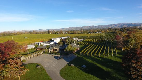 Renwick, New Zealand: Expansive grounds and Cellar Door