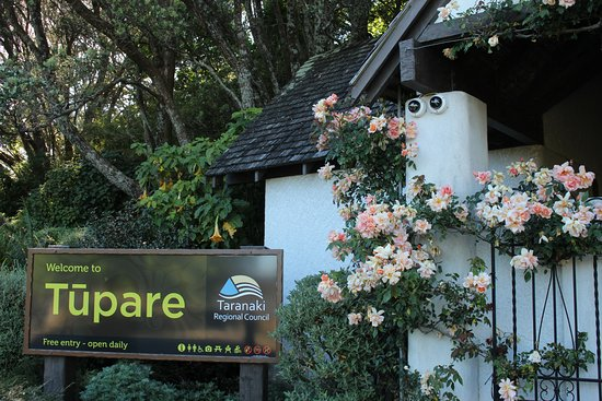 New Plymouth, New Zealand: Entrance sign and the beautiful rose 'Crepuscule'