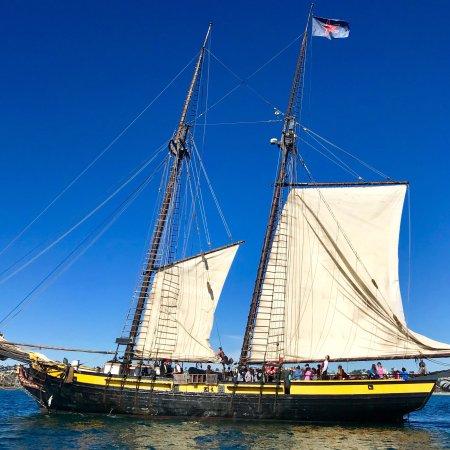 "OCEAN INSTITUTE's ""Spirit of Dana Point"" sailing outside of the Harbor (a 1770's schooner Replic"