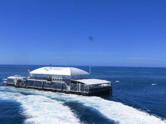 Quicksilver Views From The Catamaran Quicksilver