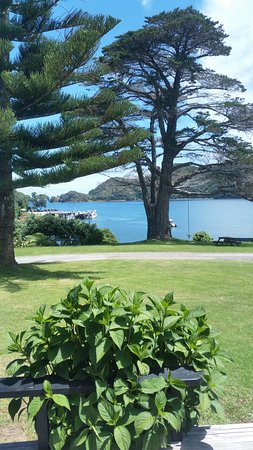 Whangapara, New Zealand: Our view from our window and outside deck.