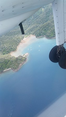 Whangapara 이미지