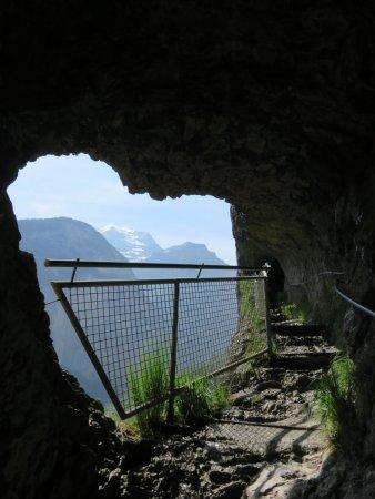 Staubbach Fall: 往觀景位置的路上