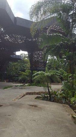 Jardin Botanico de Medellin: 20170623_154907_large.jpg