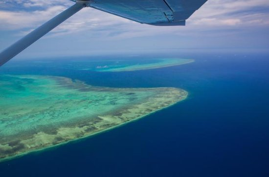 60-Minute Great Barrier Reef and Port...