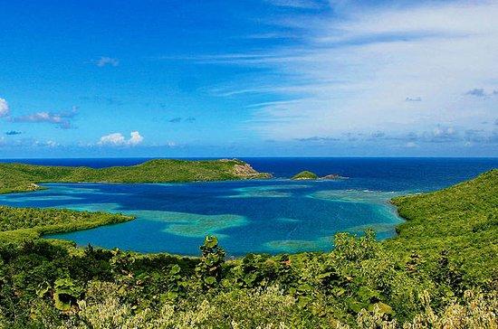 Randonnée à la Caravelle en Martinique