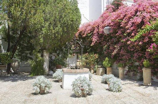 Córdoba: Visita oficial al palacio y...