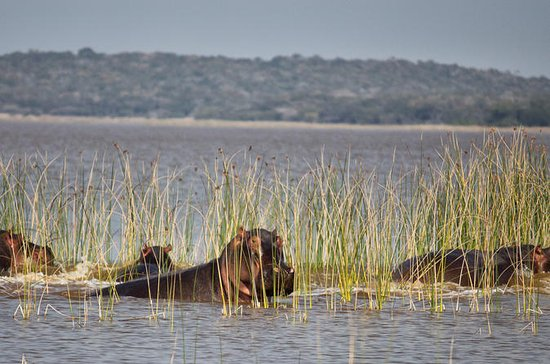 2-Day Maputo Special Reserve Guided...