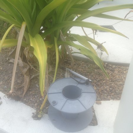 Ashmore, Australia: Strange wires coming out of the ground near pool, just tied off to the spool.. world class!