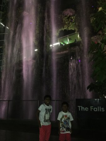 indoor water falls - Picture of Gardens by the Bay, Singapore ...