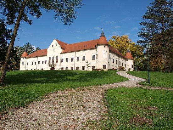 Luznica Manor