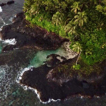 Seabreeze Resort: photo3.jpg