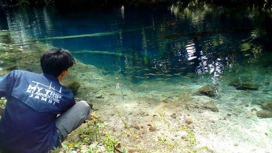 Lake Kaco照片
