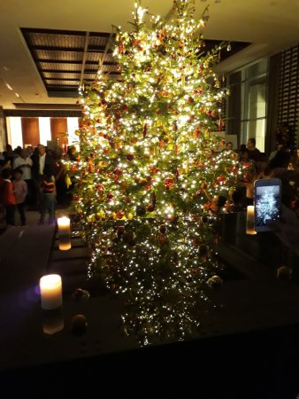 Lighted Christmas Tree Picture Of Kempinski Hotel Gold Coast City