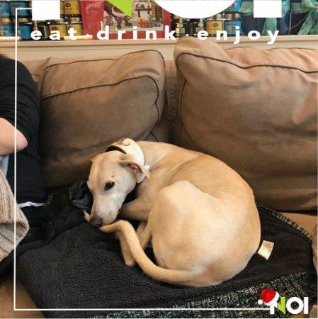 """Un nostro cliente che si fa un """"pisolino"""" sul divano"""