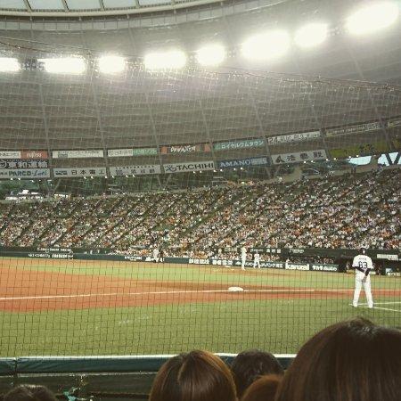 Seibu Prince Dome: IMG_20170607_183028_798_large.jpg