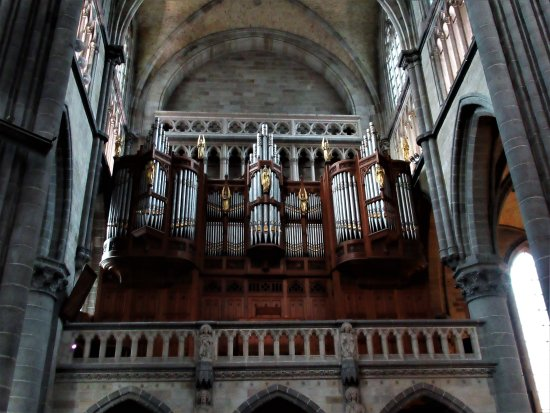 Saint Martin's Cathedral: Orgel