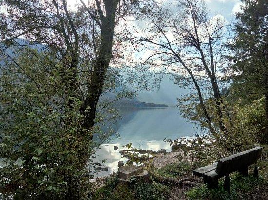 Bohinjsko Jezero, سلوفينيا: Beautiful view